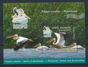 [25430] Romania 2012 Birds Vögel Oiseaux Ucelli Pelican Sheet MNH