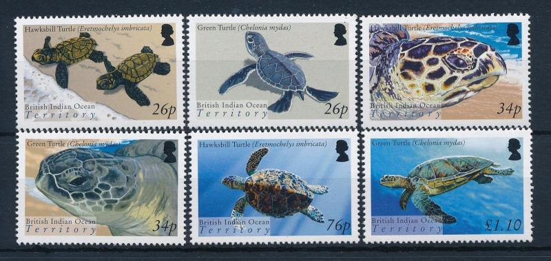[30349] British Indian Ocean Territory 2005 Marine Life Turtle MNH