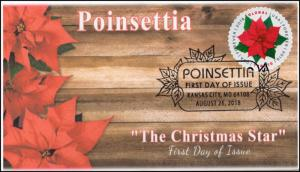 18-213, 2018, Poinsettia, Global Forever, Pictorial Postmark, First Day Cover