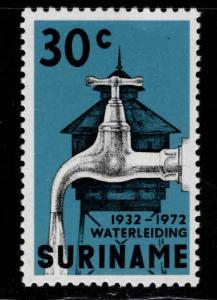 Suriname Scott 396 MNH**