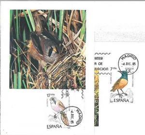 BIRDS : 2 MAXIMUM CARD - SPAIN 1985