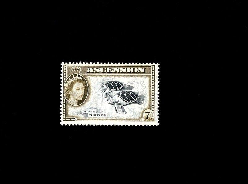 ASCENSION - 1956 - QE II - YOUNG GREEN TURTLES - MINT - MNH SINGLE!