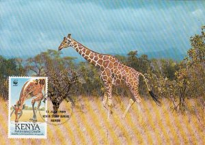 Kenya 1989 Maxicard Sc #492 3.40sh Reticulated giraffe WWF
