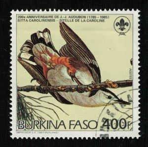 Bird (TS-2085)
