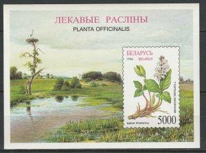 Belarus 1996 Flora Flowers Plants MNH Block