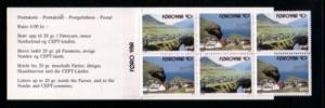 Faore Islands Sc 251a 1993 Nordic Stamp booklet mint NH