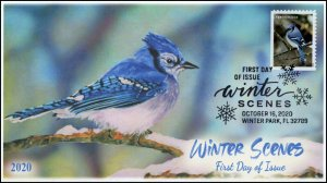 20-253, 2020, Winter Scenes, First Day Cover, Pictorial Postmark, Blue Jay