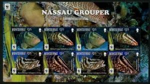 Montserrat 2016 Nassau Grouper fish WWF klb of 8v MNH