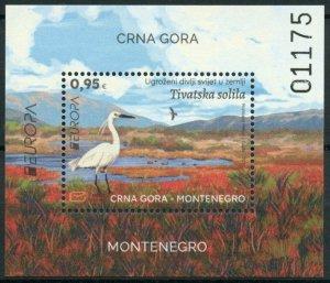 Montenegro 2021 MNH Europa Stamps Endangered Natl Wildlife Saline Birds 1v M/S