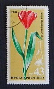 Flowers (R-318)