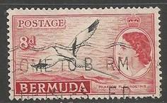 BERMUDA 153 VFU BIRD L3362-7