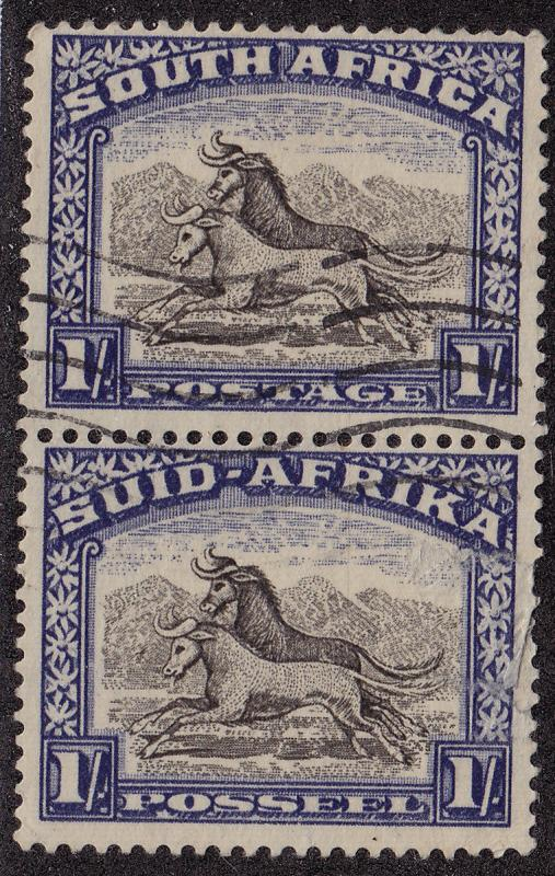 SOUTH AFRICA Used Scott # 62 Animals pair Perf 14 x 14 - bottom tear (2 Stamps)4