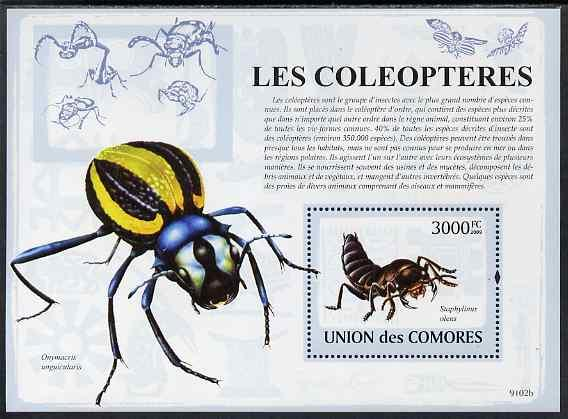 Comoro Islands MNH S/S Insects 2009