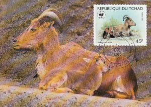 Chad 1988 Maxicard Sc #575 45fr Barbary sheep WWF