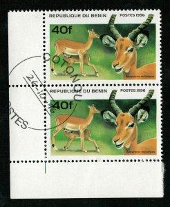 Animals, Benin, (3155-T)