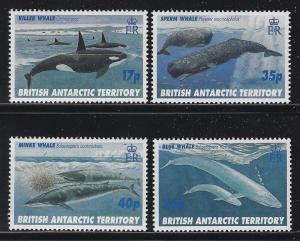 Br Antarctic Territory 1996 Whales set Sc# 244-47 NH