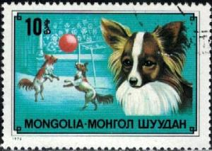 Dog, Papillon, Mongolia stamp SC#1028 used