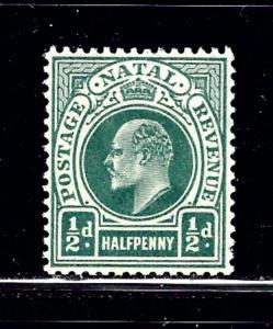 Natal 101 MVLH 1904 issue
