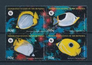 [53858] Micronesia 1997 Marine life WWF Fish MNH