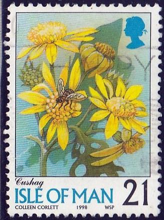 Isle of Man #767 Cushag Flower issued in 1998, used.