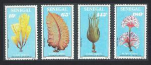 Senegal Marine Flora 4v SG#951-954 SC#780-783