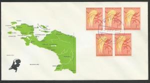 NETHERLANDS NEW GUINEA 1962 cover WAMENA cds...............................52860