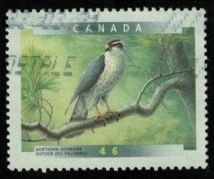 Bird (T-7784)