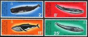 British Antarctic Territory 64-67, MNH. Whales. Sperm, Fin, Humpback, Blue, 1977
