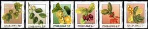Zimbabwe - 1991 Wild Fruits Set MNH**SG 810-815