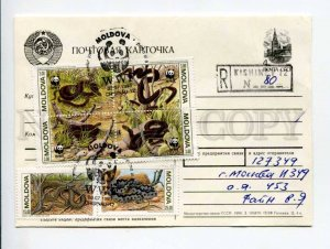 414058 MOLDOVA to RUSSIA 1993 WWF snakes registered Kishinev real posted postal