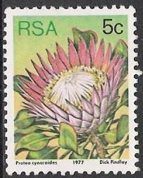 South Africa #479 Flowers Plants Used