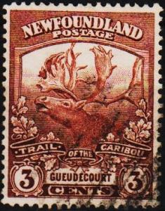 Newfoundland. 1919 3c  S.G.132 Fine Used