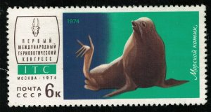 Sea animal, 6 kop, MNH ** (T-6869)