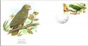 Brazil, Worldwide First Day Cover, Birds
