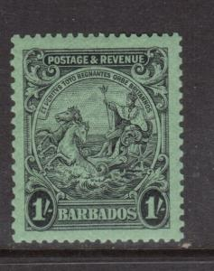 Barbados #175a Extra Fine Never Hinged Perf 13.5 x 12.5