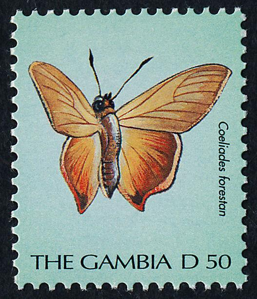 Gambia 2452 MNH Butterfly