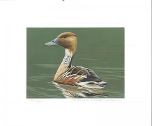 RW53 1986 FEDERAL DUCK STAMP PRINT FULVOUS DUCK MEDALLION ED by B. Moore