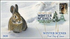 20-246, 2020, Winter Scenes, FDC, Digital Color Postmark, Cottontail Rabbit