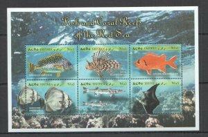 NW0466 ERITREA FAUNA MARINE LIFE FISH & CORAL REEFS OF THE RED SEA KB MNH