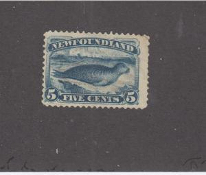 NEWFOUNDLAND # 54  F-MNG  5cts  HARP SEAL/ DARK BLUE CAT VALUE $100