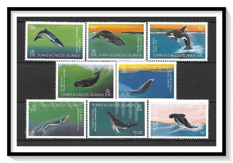 Turks & Caicos #564-571 Whales MNH
