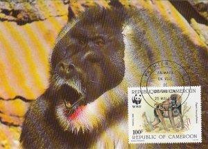 Cameroun 1988 Maxicard Sc #846 100fr Drill baboon WWF