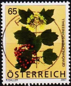 Austria. 2007 65c Fine Used