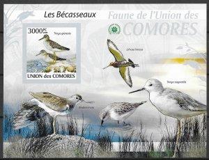 Comoro Island MNH S/S Sandpiper Birds 2009