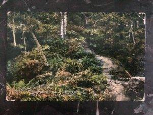 1923 NSW Australia RPPC Postcard Cover Blue Mountains To Sydney