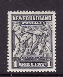 Newfoundland-Sc #253- id 7-unused,og,NH-1c dark grey-Codfish-1941-44-