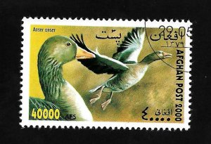 Afghanistan 2000 - U - Unlisted - Pic 4 *