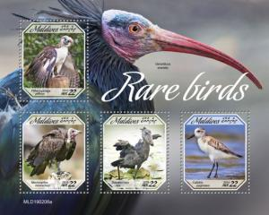 MALDIVES - 2019 - Rare Birds  - Perf 4v Sheet - MNH