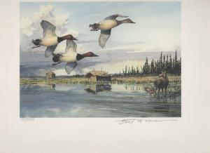 ALASKA #8 1992  STATE DUCK STAMP PRINT CANVASBACK MEDALLION EDITION Reg $295