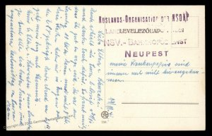 Hungary Nazi Party 3rd Reich Germany NSDAP Auslands Landesgruppe IV Card 92543